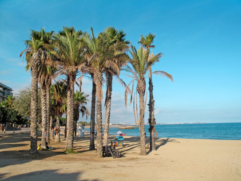 Ferienhaus Beichold (CBI150) (1077057), Cambrils, Costa Dorada, Katalonien, Spanien, Bild 16