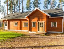 Jämsä - Maison de vacances Lokinsiipi