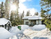Pudasjärvi - Ferienhaus Aihki a