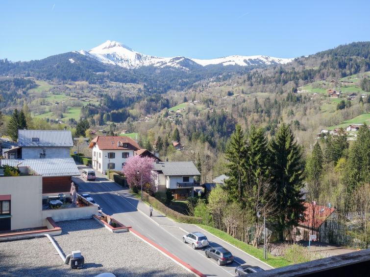 Slide4 - Fleurs des Alpes