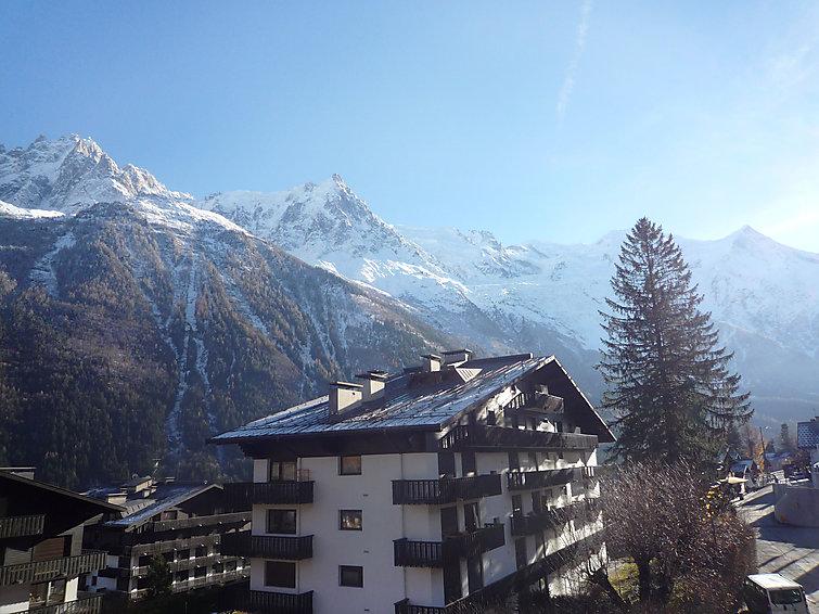 Les Aiguilles du Brévent Apartment in Chamonix