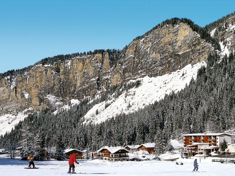 Avoriaz accommodation chalets for rent in Avoriaz apartments to rent in Avoriaz holiday homes to rent in Avoriaz