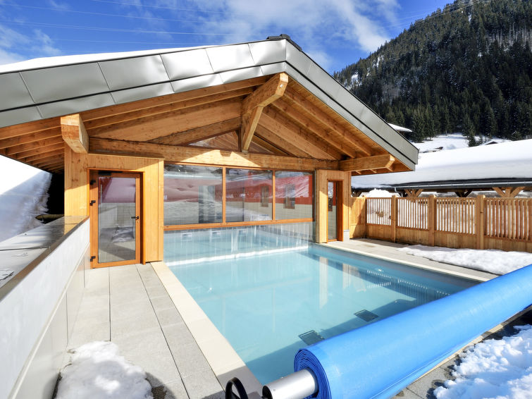 Le Grand Lodge (CHL100) Apartment in Chatel