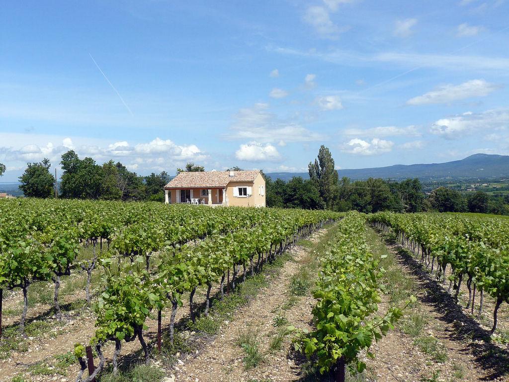 Ferienhaus Les Lilas Blancs (VRS205) (300857), Valréas, Vaucluse, Provence - Alpen - Côte d'Azur, Frankreich, Bild 15