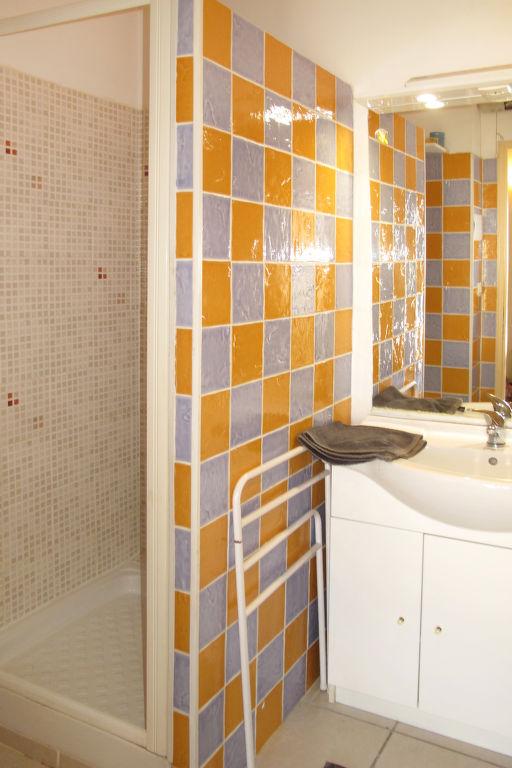 Holiday apartment Les Lauriers (MLM110) (138363), Mallemort, Bouches-du-Rhône, Provence - Alps - Côte d'Azur, France, picture 3