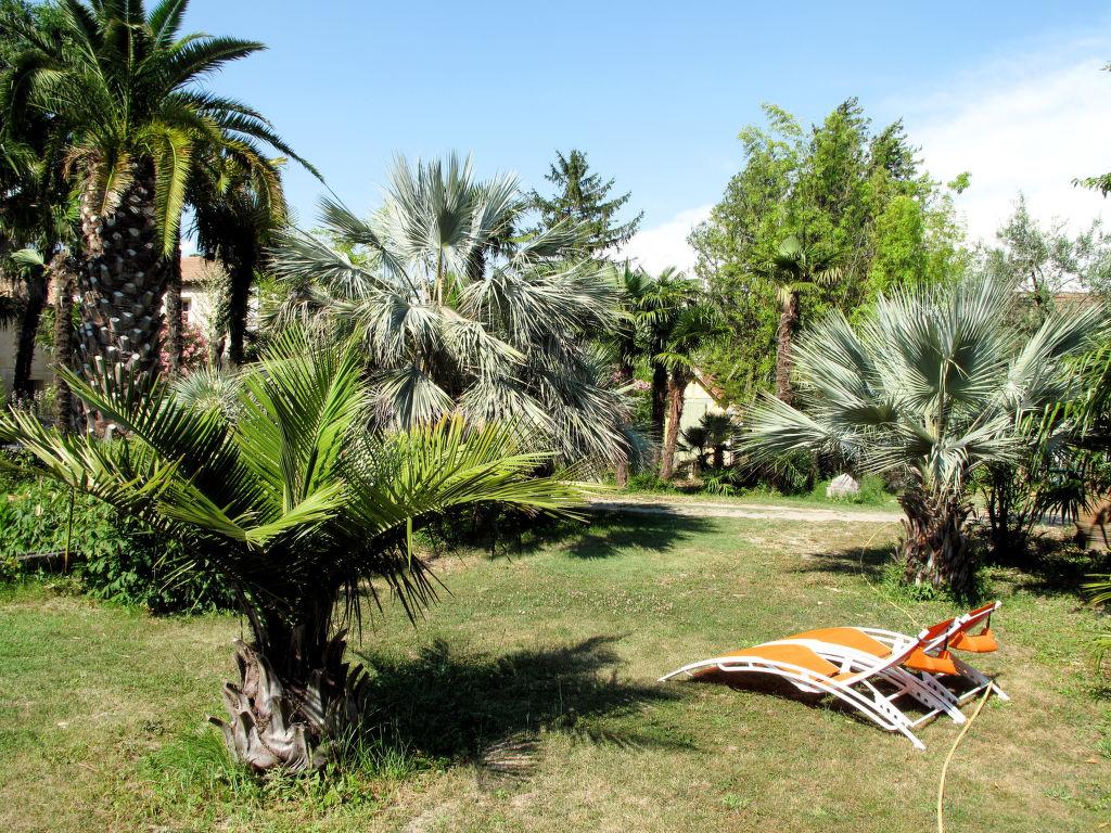 Holiday house Mas des Palmiers I (TAA520) (106831), Tarascon, Bouches-du-Rhône, Provence - Alps - Côte d'Azur, France, picture 13
