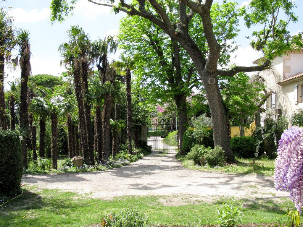 Holiday house Mas des Palmiers I (TAA520) (106831), Tarascon, Bouches-du-Rhône, Provence - Alps - Côte d'Azur, France, picture 15