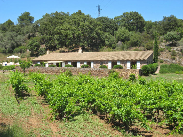 La Bergerie des Vignes (AGY130)