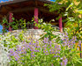 Bild 32 Aussenansicht - Ferienhaus Chiron, Umag Babici