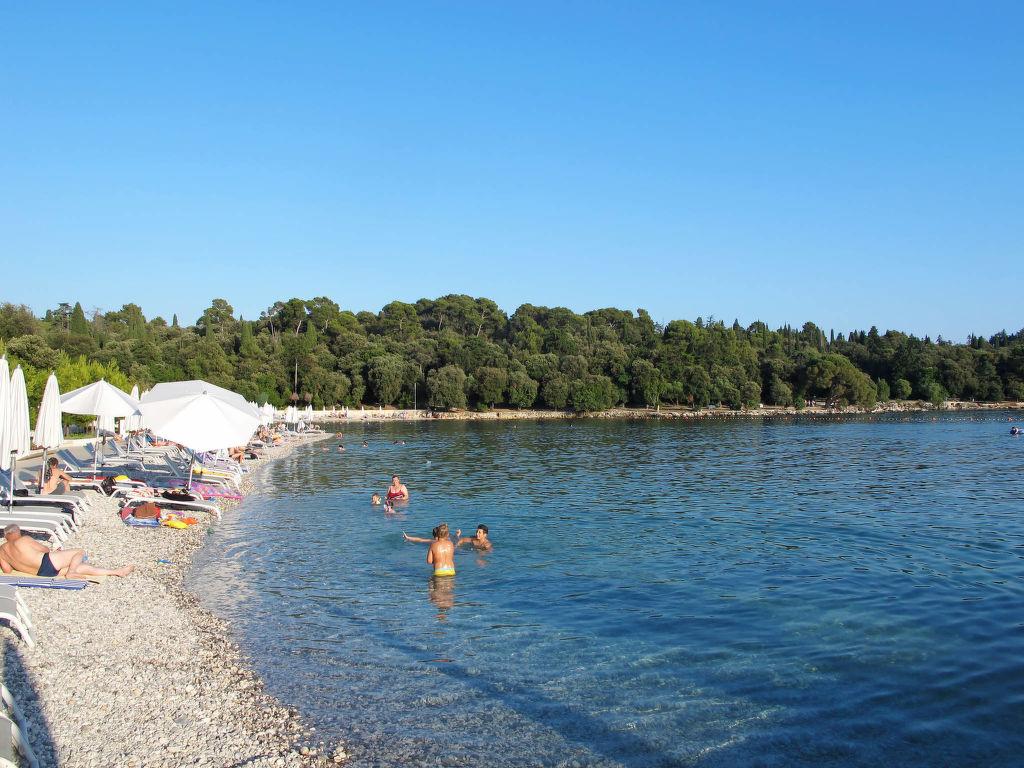 Maison de vacances Marijana (ROJ460) (138859), Zminj, , Istrie, Croatie, image 3