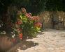 Image 28 extérieur - Maison de vacances Zora, Krk Njivice