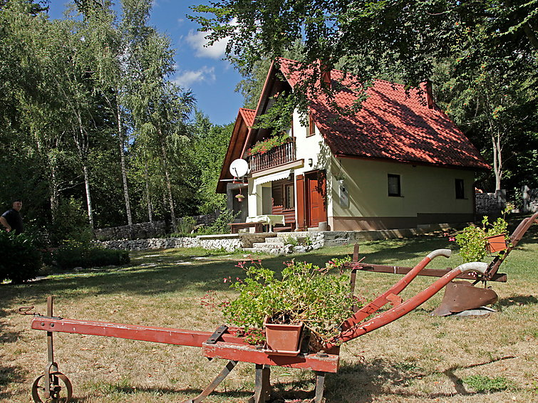 Holiday Home Bojana pets allowed and with fireplace