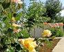 Bild 8 Aussenansicht - Ferienwohnung Maslina, Vodice