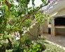 13. zdjęcie terenu zewnętrznego - Apartamenty Jure, Korcula Prižba