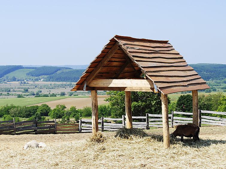 Ranch - 2