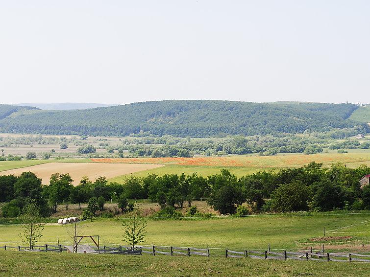 Ranch - 4