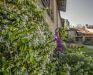 Bild 46 Aussenansicht - Ferienhaus Antico Borgo del Riondino, Alba