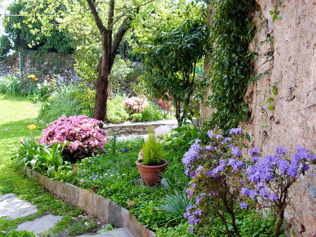 Ferienhaus Morandi (CNR111) (114456), Cannero Riviera, Lago Maggiore (IT), Piemont, Italien, Bild 15