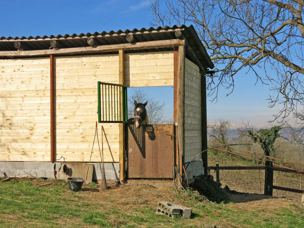 Ferienwohnung Paolo (AST102) (115027), Rocchetta Tanaro, Asti, Piemont, Italien, Bild 27