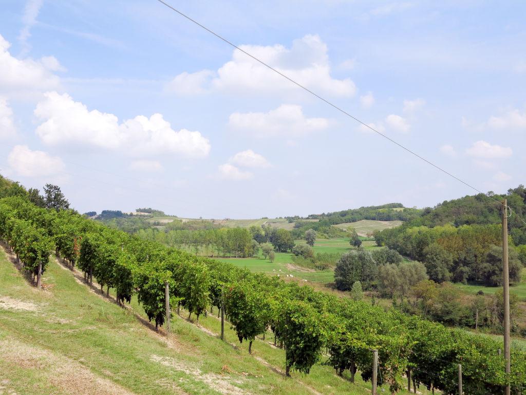 Ferienhaus La Mondianese (AST310) (2512076), Rocchetta Tanaro, Asti, Piemont, Italien, Bild 12