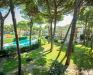 13. zdjęcie terenu zewnętrznego - Apartamenty Miami, Lido di Spina