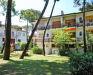 18. zdjęcie terenu zewnętrznego - Apartamenty Miami, Lido di Spina