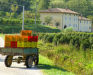 Foto 21 exterieur - Appartement Alba, Montecatini Terme