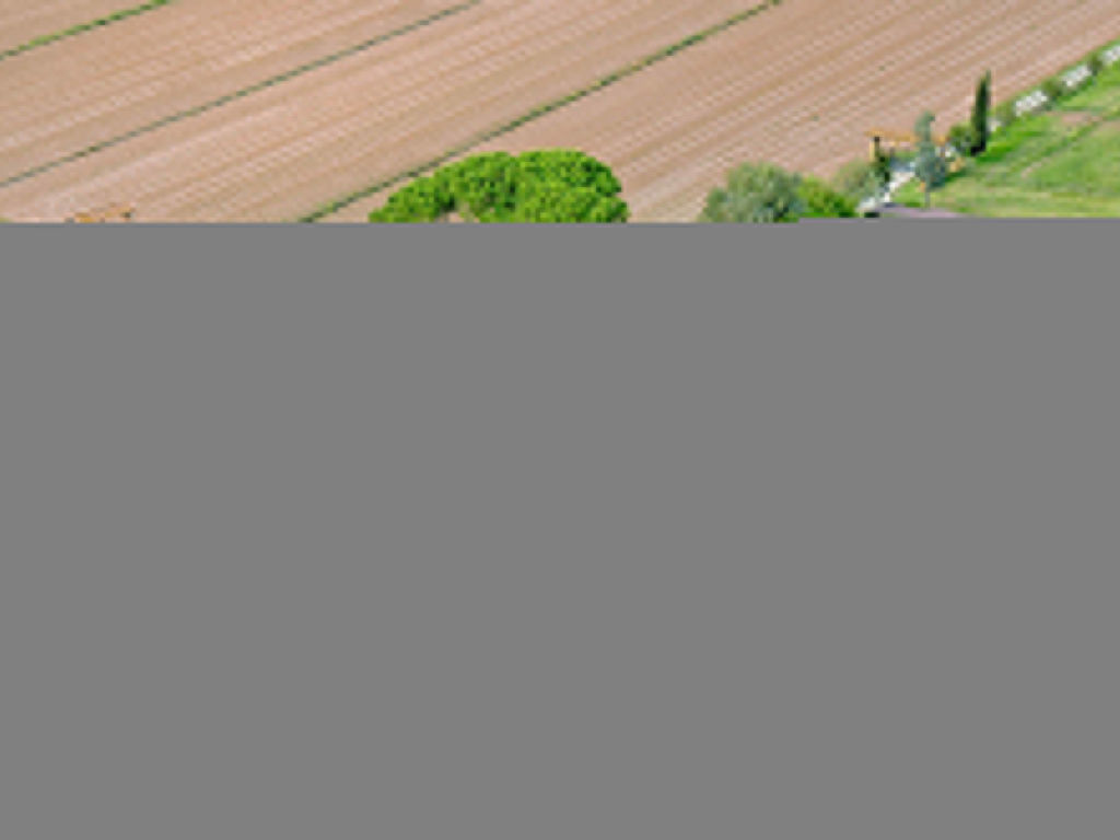 Ferienhaus Casa di Caccia (MST150) (2054489), Pieve a Nievole, Pistoia, Toskana, Italien, Bild 2