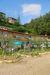 Foto 7 exterior - Apartamento Fattoria di Castiglionchio, Pontassieve
