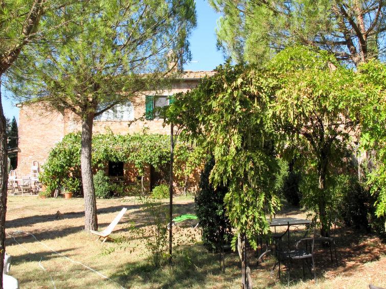 Santa Croce - Elisabetta (SIA144) - Apartment - Siena