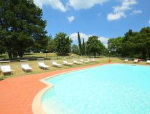 Appartement Monte San Savino INT-IT5299.820.2
