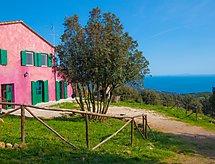 Castiglioncello - Dom wakacyjny Isole