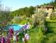 San Polo in Chianti - Appartement Iris