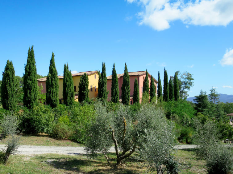 Borgo San Pecoraio (RIP338) - 26
