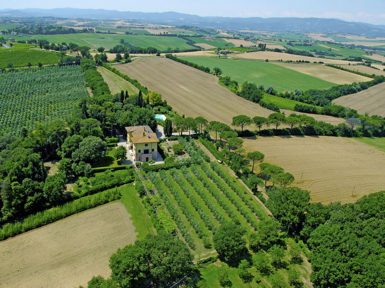 Luxurious villa Angeli (18p) for 18 persons with private swimmingpool in Italy (I-707)
