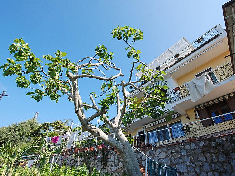 Monalisa - Capri View