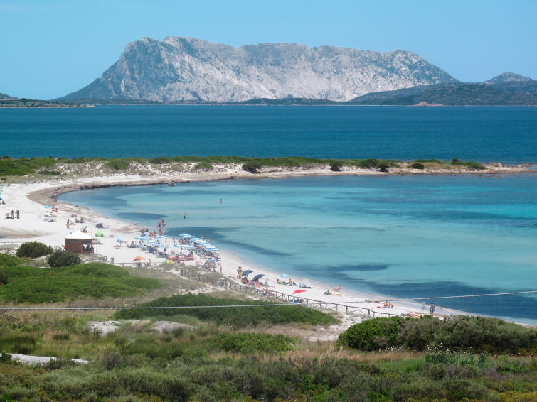 Photo of Geranium Beach (TEO351)