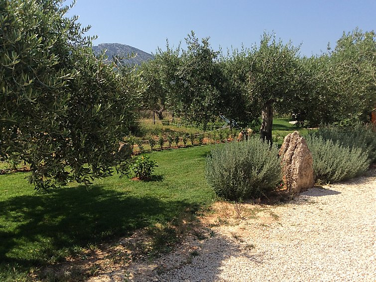 Holiday Home Appart. all'interno di un Oliveto