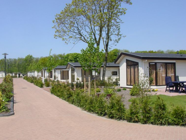Domek letniskowy Recreatiepark Noordwijkse Duinen