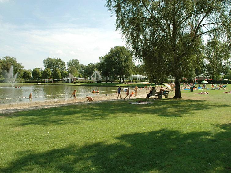 Subtropisch zwembad op Buitenhof De Leistert in Limburg (NL6088.301.4 )