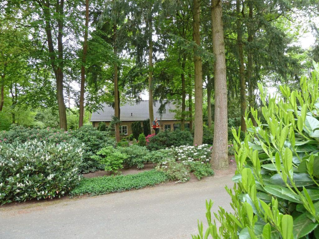 Ferienhaus Bosrijk Ruighenrode Ferienhaus in den Niederlande