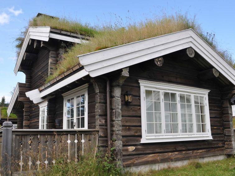 met je hond naar dit vakantiehuis in Fåvang