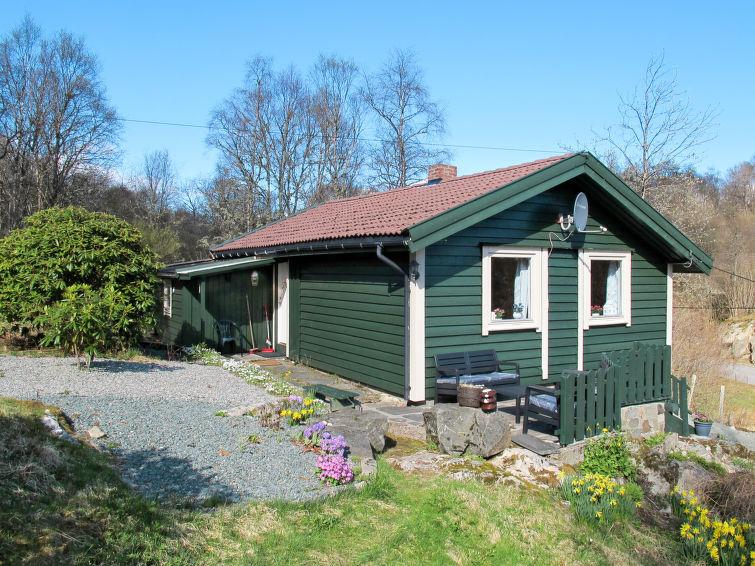 Ferienhaus Grønnehytta FJH606