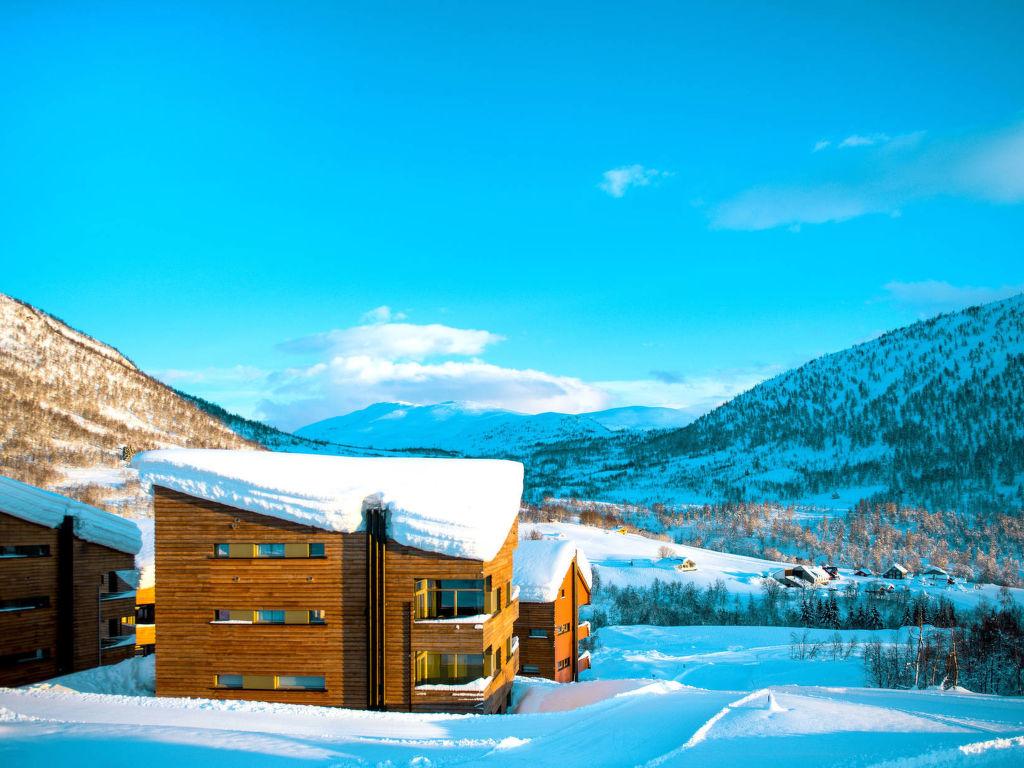Ferienwohnung Myrkdalen (FJH560) (2315081), Vossestrand, Hordaland - Hardangerfjord, Westnorwegen, Norwegen, Bild 2