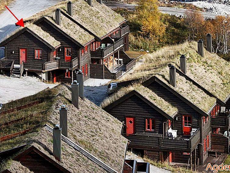 met je hond naar dit vakantiehuis in Åseral