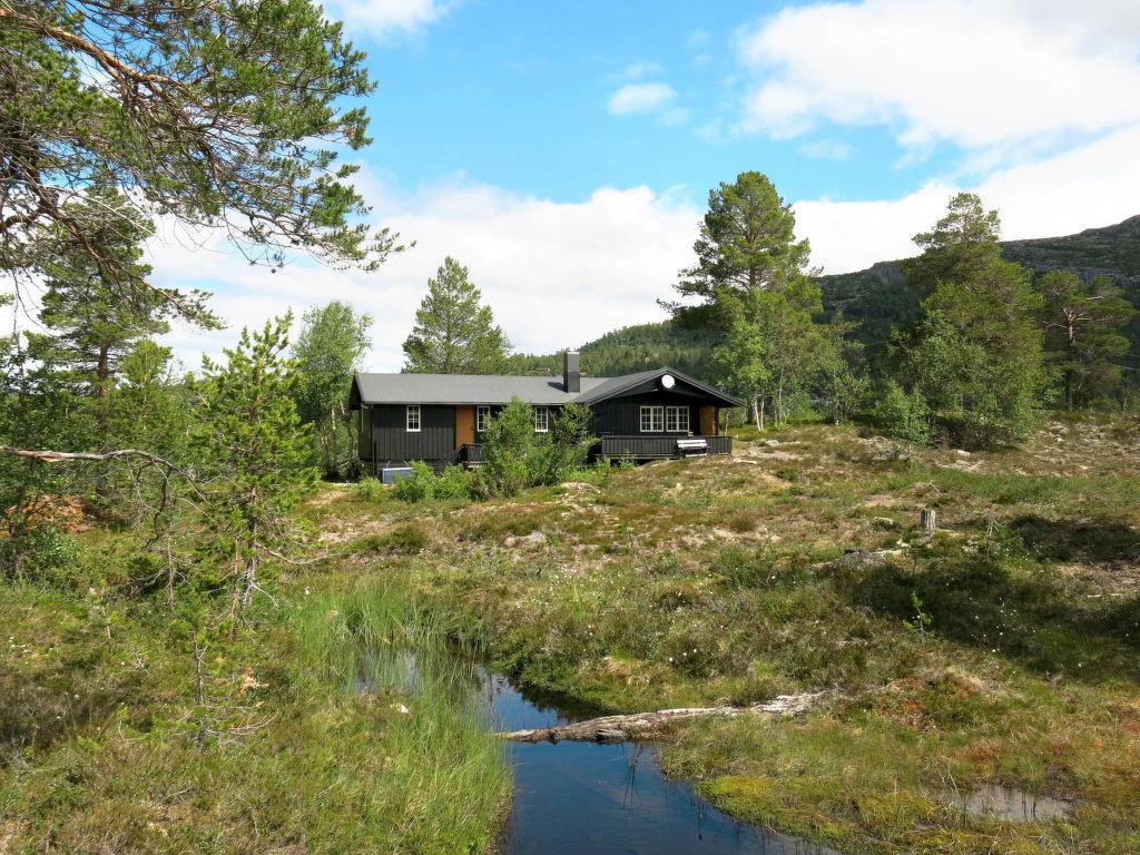 Ferienhaus Vatland (SET081) (2619390), Hovden, Agder Ost, Südnorwegen, Norwegen, Bild 3