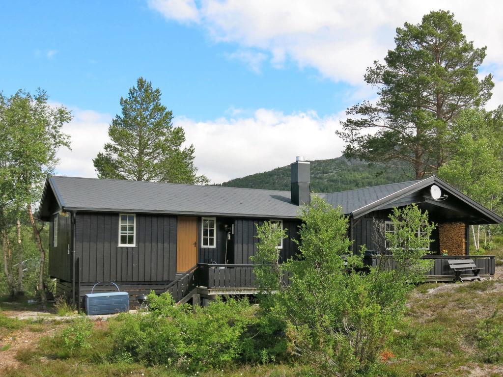 Ferienhaus Vatland (SET081) (2619390), Hovden, Agder Ost, Südnorwegen, Norwegen, Bild 4