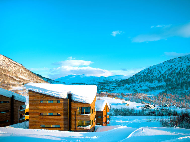 Myrkdalen accommodation chalets for rent in Myrkdalen apartments to rent in Myrkdalen holiday homes to rent in Myrkdalen