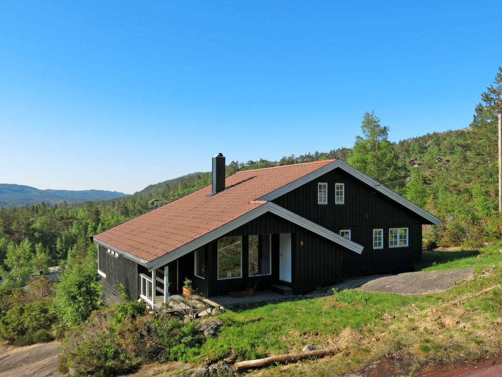 Ferienhaus Fjellro (SOW073) (2648520), Åseral, Agder West, Südnorwegen, Norwegen, Bild 1