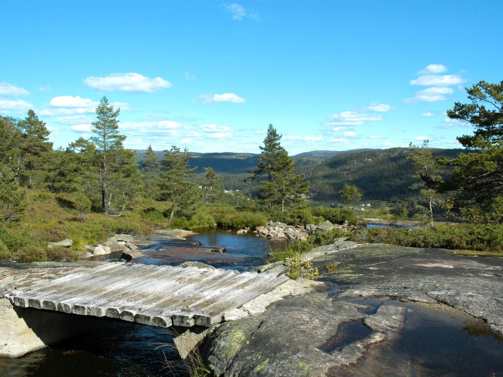 Ferienhaus Torbu (SOW090) (2648526), Åseral, Agder West, Südnorwegen, Norwegen, Bild 12